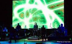 שובה של האורקסטרה. צילום טוני פיין